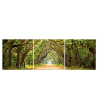 Baxton Studio AF-1023ABC Tunnel Of Trees Mounted Photography Print Triptych