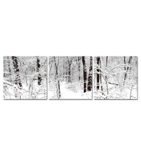Baxton Studio B-4003ABC Winter Woods Mounted Photography Print Triptych
