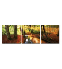Baxton Studio De-3054Abc Forest Oasis Mounted Photography Print Triptych
