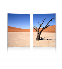 Baxton Studio Fg-1065Ab Desert Solitude Mounted Photography Print Diptych