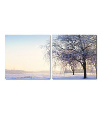 Baxton Studio VC-2046AB Snowy Solitude Mounted Photography Print Diptych in Multi