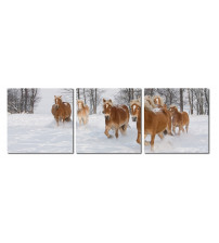 Baxton Studio Vc-2050Abc Horse Herd Mounted Photography Print Triptych
